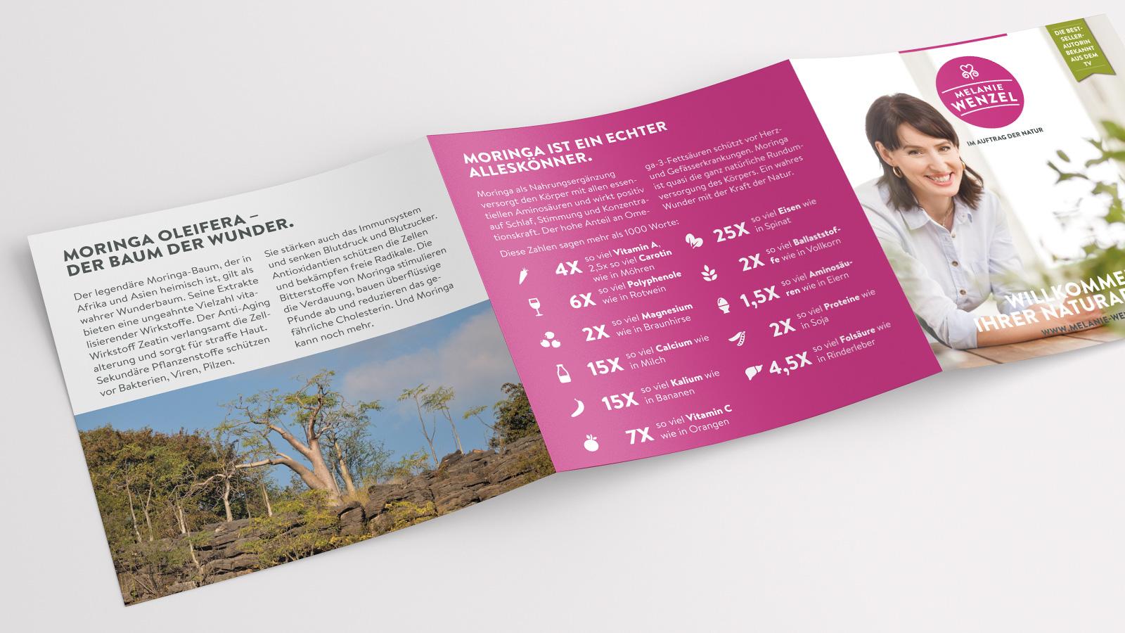 Broschüre Moringa-Baum