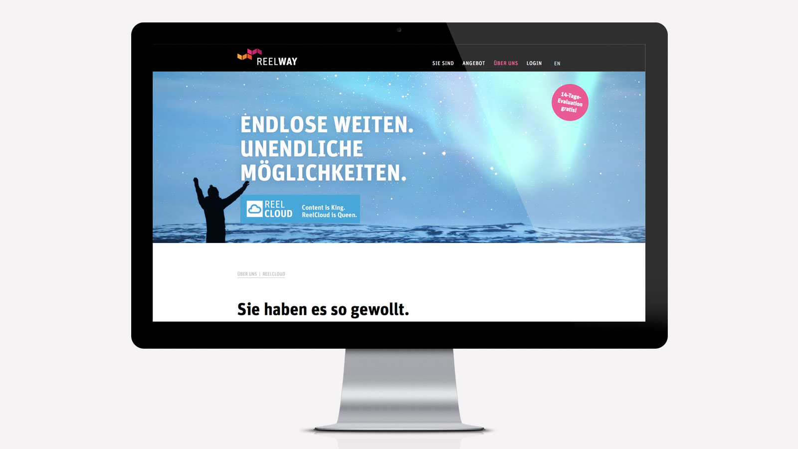 Webdesign für Online-Management-Software