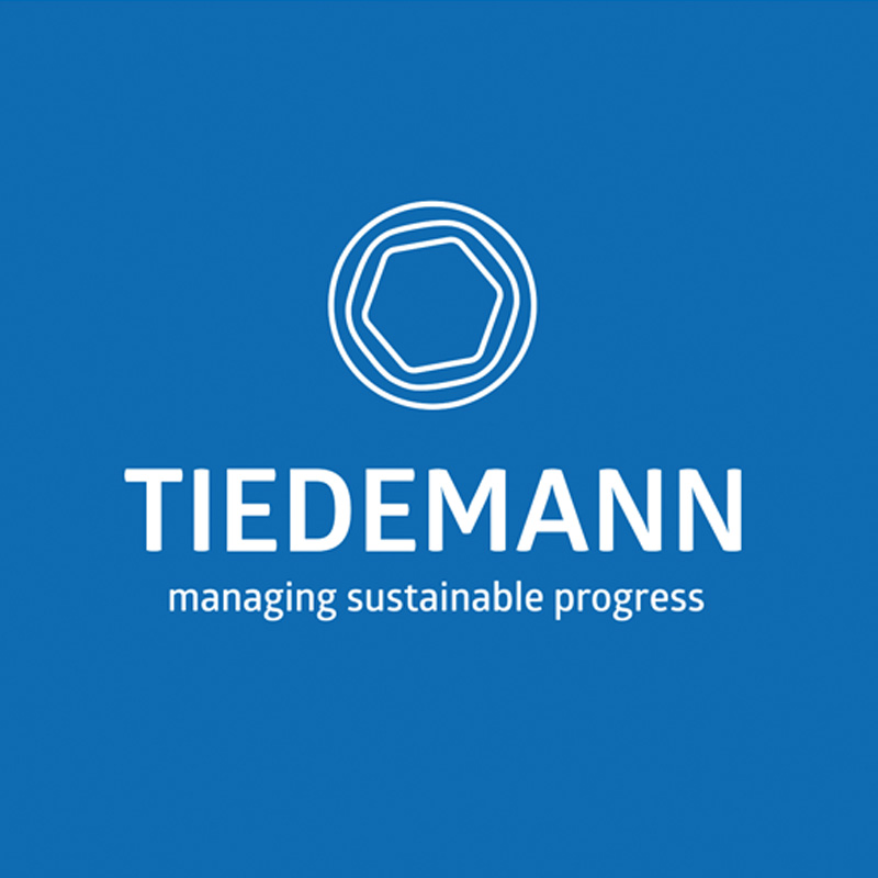 Logo für managing sustainable progress
